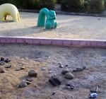 公園の砂場