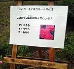 大井戸公園で