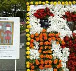 花と緑のフェスティバル/伊丹の新図書館