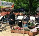 花と緑のフェスティバル 上坂部西公園