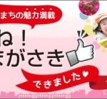 尼崎市ポータルサイト「いいね!あまがさき」