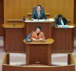 30年度予算特別委員会における代表質疑