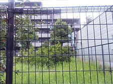 20090919_04.jpg