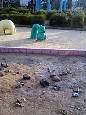 20100301_03.jpg
