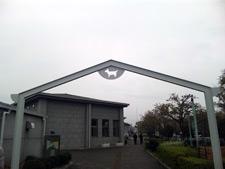20100416_02.jpg