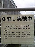 20110428_01.jpg