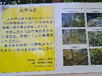 20110713_02.jpg