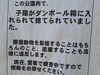 20110713_03.jpg