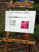 20111106_03.jpg